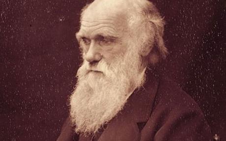 Charles Darwin en Lieja