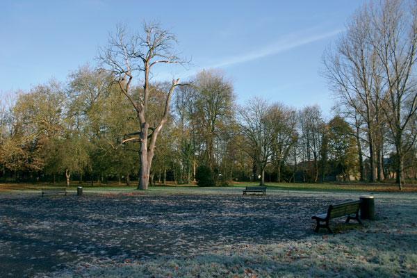 Parque de Joncquoy