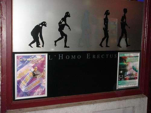 L'Homo Erectus en Bruselas