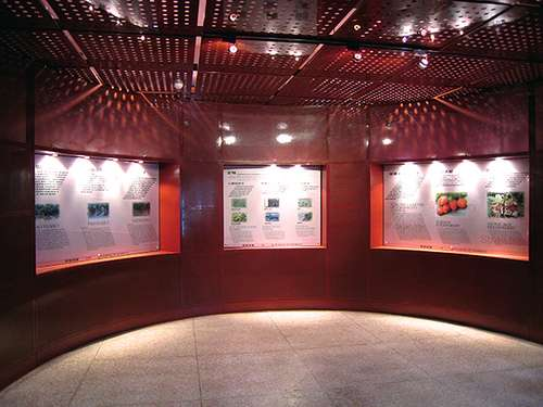 El Museo de la Fresa en Wepion