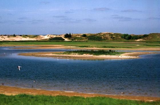 La Reserva Natural de Zwin